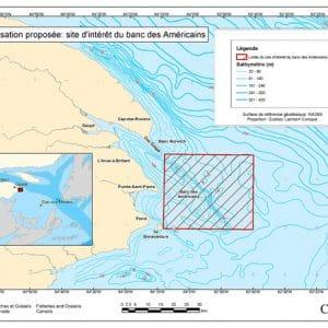 <strong>Une nouvelle aire marine protégée : le Banc-des-Américains !</strong> <br>Créditphoto: Le banc des Américains est une élévation sous-marine prolongeant la pointe de la Gaspésie. Crédit photo : Pêches et Océans Canada