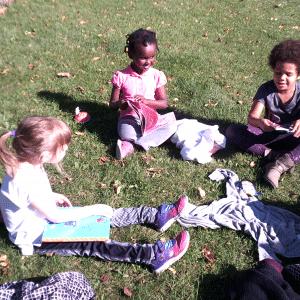 <strong>Projet Les chevaliers de l'environnement</strong> <br>Créditphoto: Manon Gileau. Lecture avec doudou au parc par un bel après-midi d'automne suivie d'une visite de notre arbre adopté.